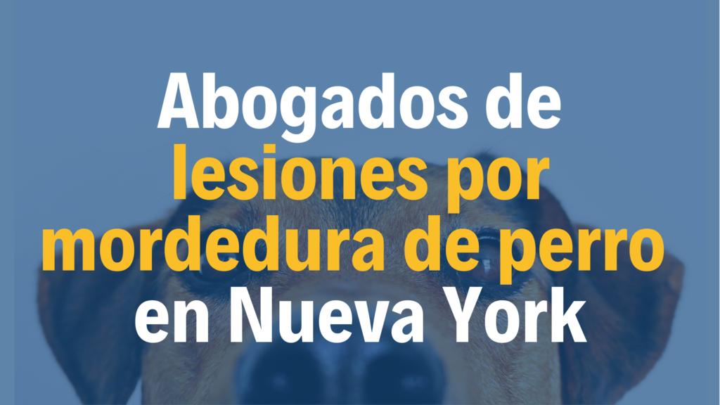 Abogados de confianza defienden casos de mordedura de perro en Nueva York NYC sin importar estatus migratorio